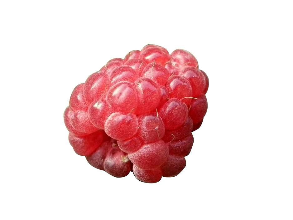 Rote Erdbeere auf weißen Hintergrund